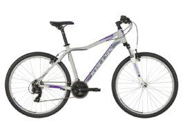 VANITY 10 Purple Grey  27.5″