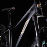 CUBE ACCESS WS EXC BLACK'N'SESAM 2020