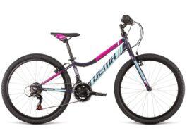 ISEO 24 dark violet