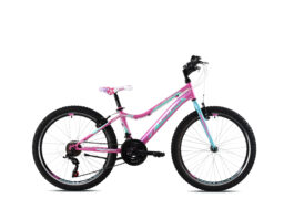 Diavolo DX 400 pink-tirkiz 24″
